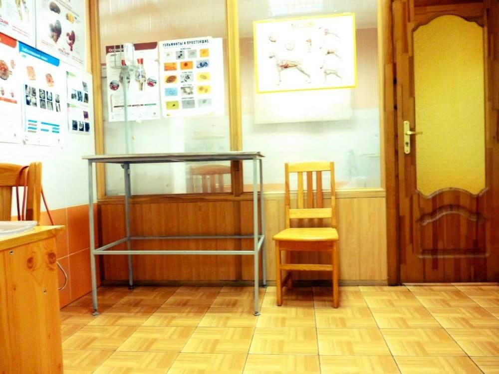 интерьер ветеринарной клиники фото 2