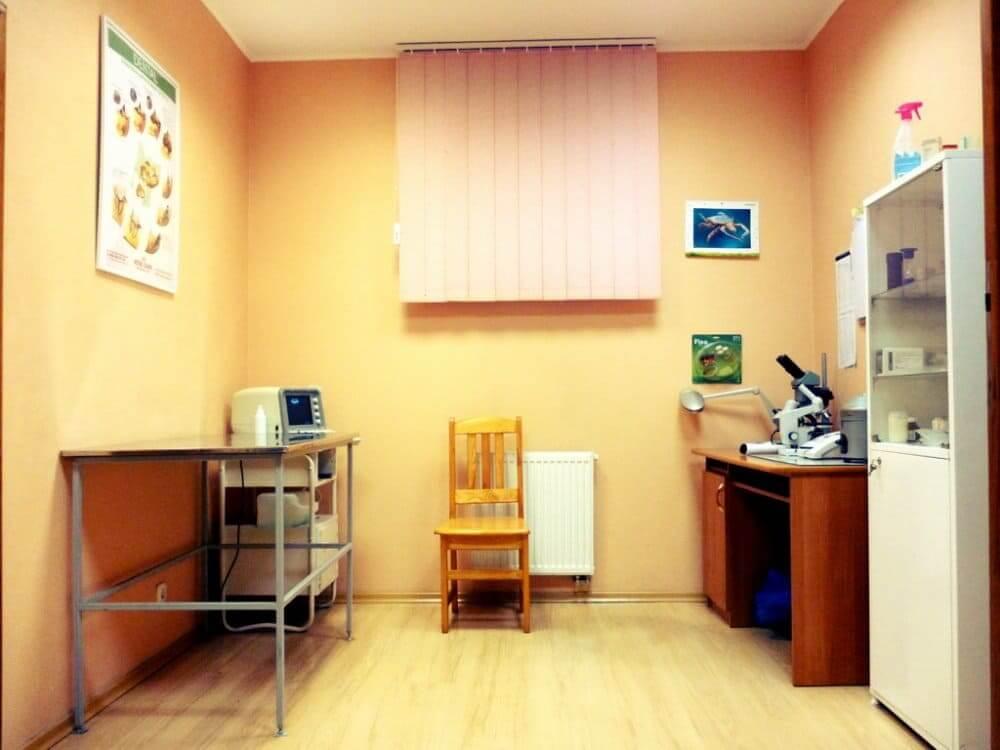 кабинет ветеринара