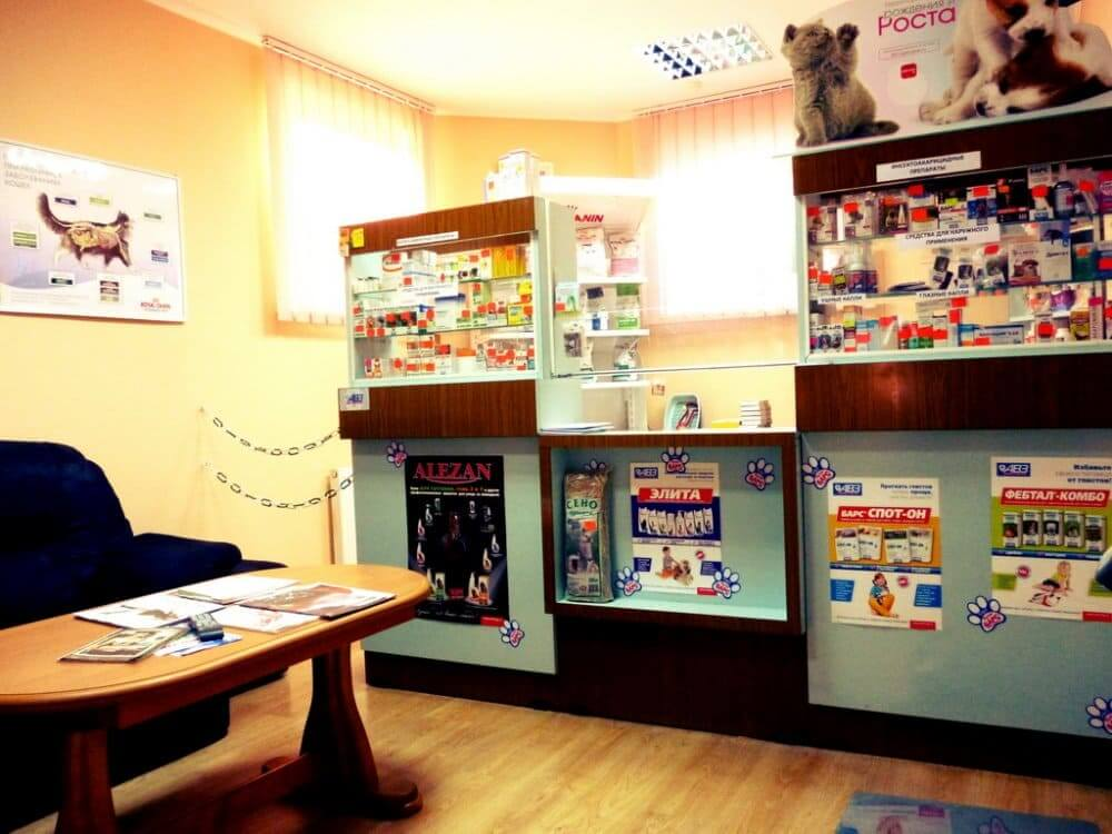 интерьер ветеринарной клиники фото 3