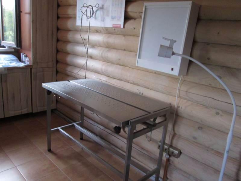 ветеринарная клиника в Светлогорске фото 1