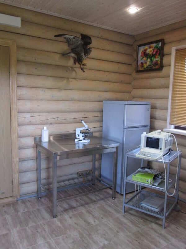 ветеринарная клиника в Светлогорске фото 2